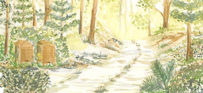 Forest density ...